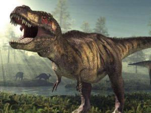 مالذي يتسبب في انقراض الحيوانات ؟